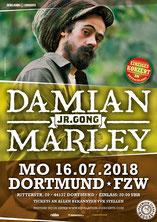 """Damian """"Jr.Gong"""" Marley"""